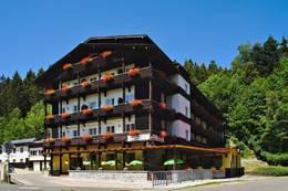 4 Tage im 3* Hotel am Steinbachtal in Bad Kötzting inkl. Badewelt